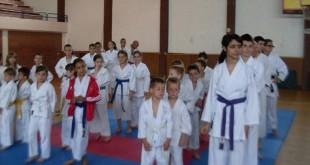 Karate Klub Backa Topola